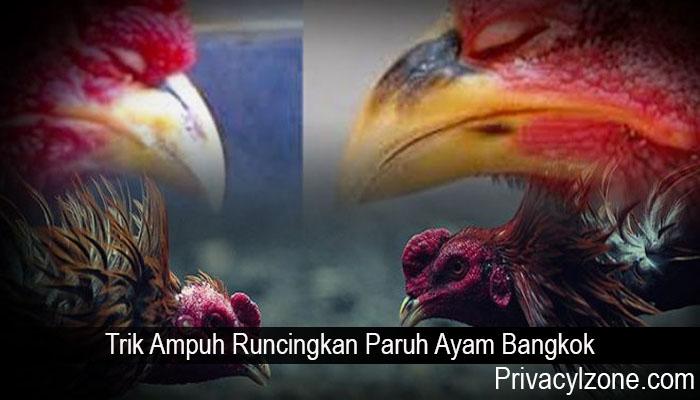 Trik Ampuh Runcingkan Paruh Ayam Bangkok